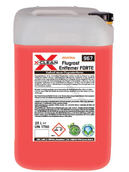 Flugrost-Entferner-Forte